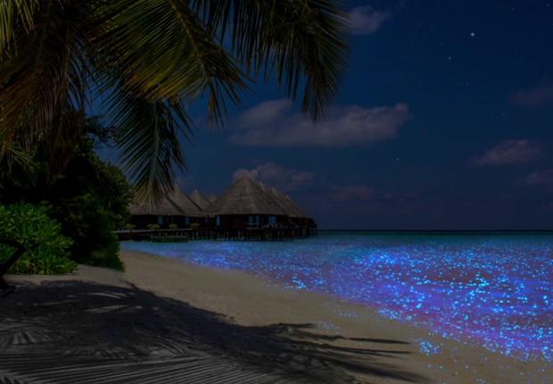 Maldivas, no Oceano Índico (Foto: Divulgação via BBC)