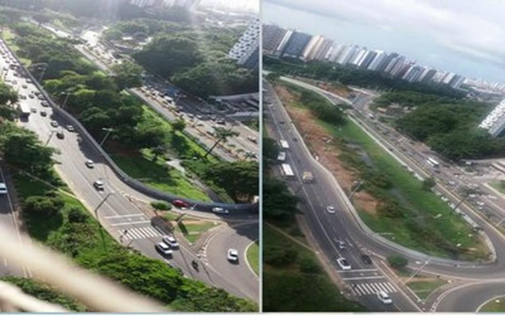Órgãos apontam derrubada de árvores durante obras do BRT. (Foto: Divulgação/MPF)