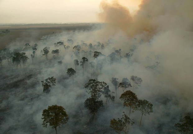 Desmatamento na área da Bacia Amazônica, na Amazônia (Foto: Greenpeace)