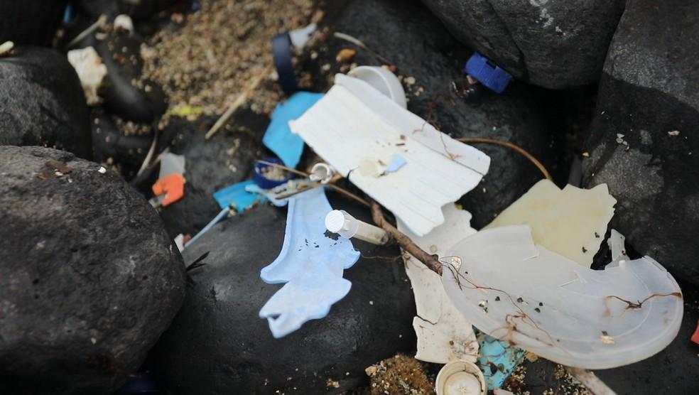 Substitutos naturais para plásticos podem ajudar a reverter a maré crescente de resíduos plásticos nos oceanos — Foto: Fábio Tito/G1