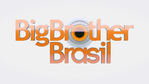 Big Brother Brasil 17
