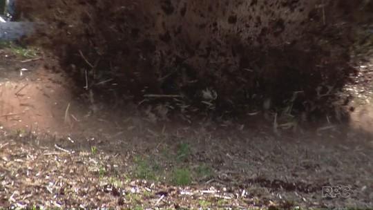 Esquadrão antibomba da PF detona explosivo achado em banco arrombado
