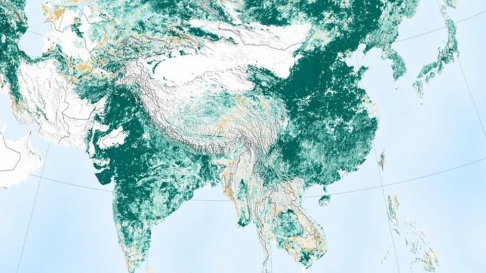 Aumento de área coberta por vegetação foi puxado pela Índia e China — Foto: Nasa