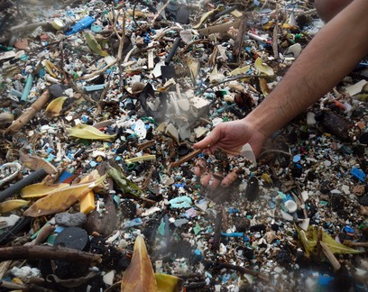"""Microplásticos estão invadindo """"berçário"""" de peixes no Havaí"""