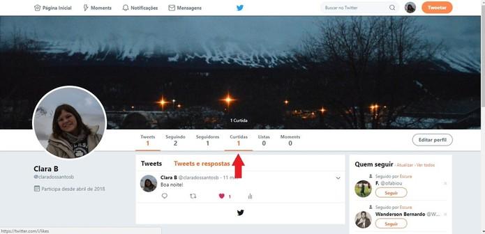Curtir um tweet faz com que ele fique salvo em uma lista, como se fossem as postagens que você mais gosta (Foto: Reprodução/Clara Barreto)