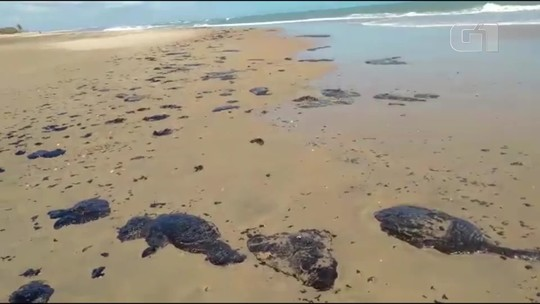 Manchas escuras são vistas em ao menos 43 praias do Nordeste, mas origem segue indefinida