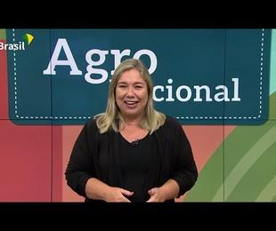 Katy Navarro apresentava o 'Agro nacional' | Reprodução