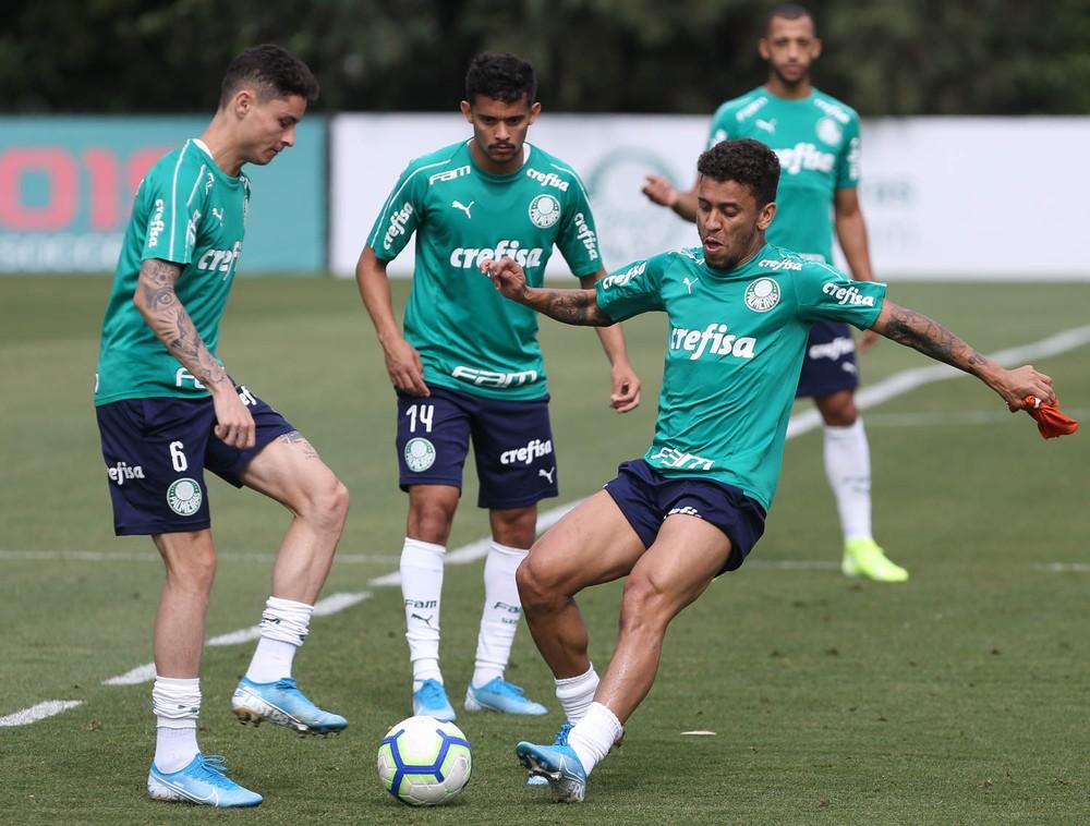 Plantão médico: Palmeiras atualiza situação dos jogadores lesionados