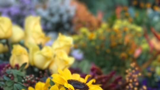 Flores: confira dicas de decoração e de presentes para o 'Dia dos Namorados'