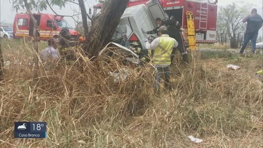 Duas pessoas ficam feridas após furgão bater em árvore na SP-225
