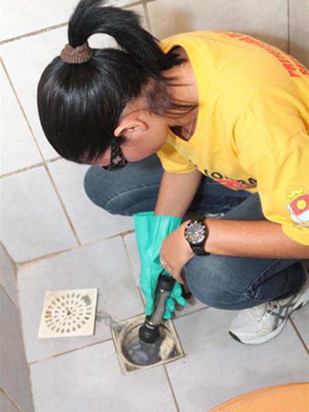 Agentes da dengue atuam em residências em Guarujá, SP (Foto: Prefeitura de Guarujá)