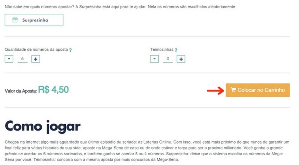 Inclusão online de aposta de seis números no sorteio da Mega da Virada  — Foto: Reprodução/Raquel Freire