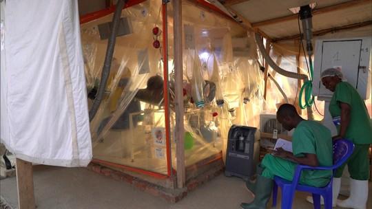 Descoberta científica traz esperança no combate ao vírus do ebola