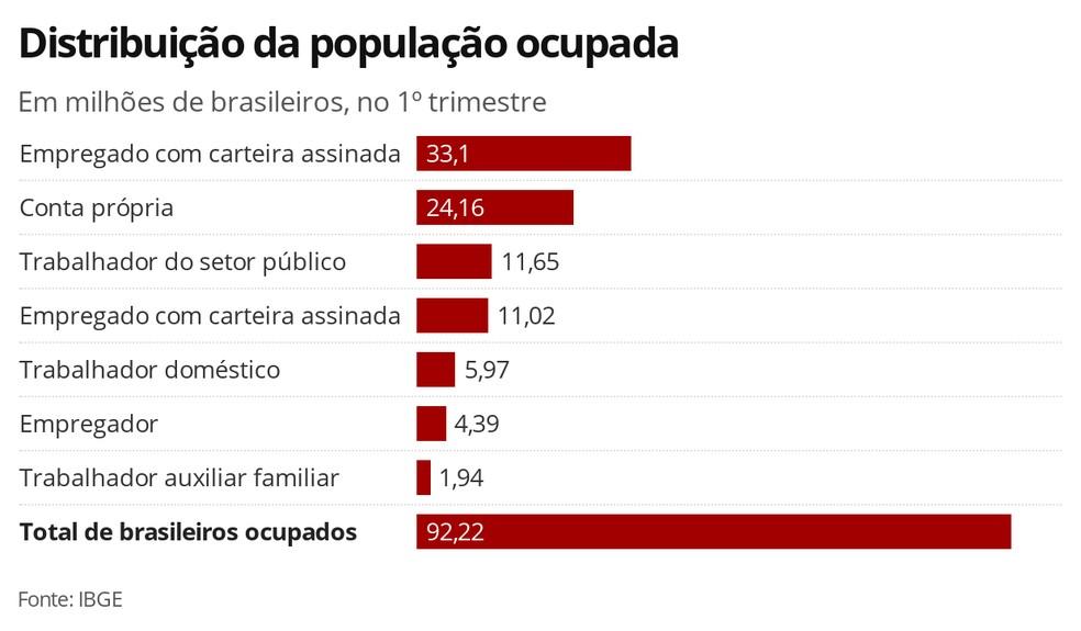 Distribuição da população ocupada no Brasil — Foto: Economia G1