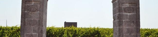 Reprodução Felline: vinícola italiana reúne História e tradição