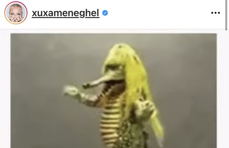 """Xuxa compartilhou um vídeo da personagem Cuca, do """"Sítio do picapau amarelo"""", sambando e destacou que mais de 50% da população já deveria estar vacinada Reprodução"""