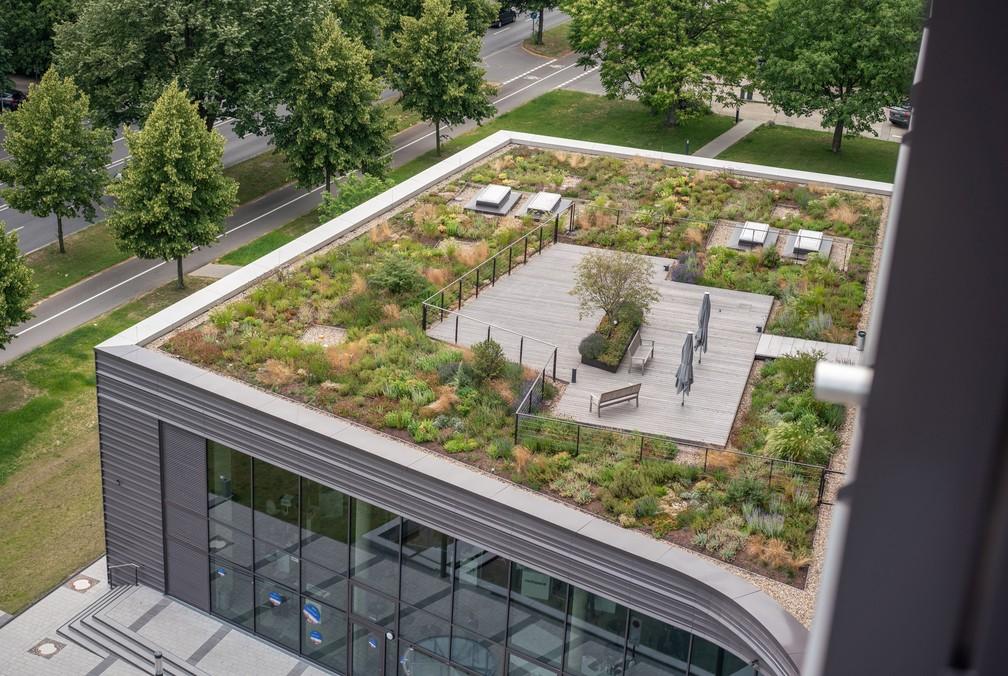 Telhado verde implantado sobre prédio da Escola de Finanças e Administração de Frankfurt — Foto: Frank Rumpenhorst/dpa/Picture-Alliance/AFP/Arquivo