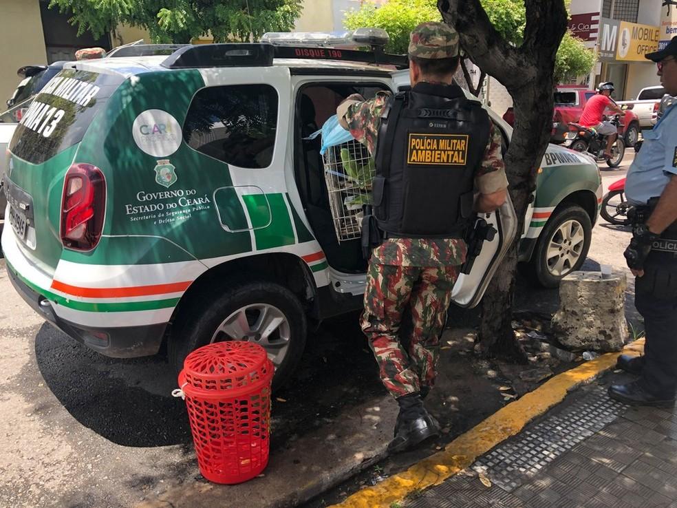 Agentes são suspeitos de extorquir dinheiro de empresários no Ceará — Foto: Maristela Gláucia/Sistema Verdes Mares