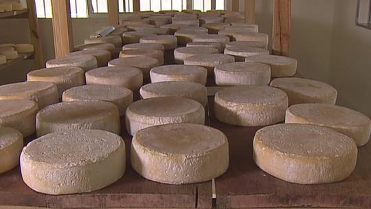 Vale da Gurita reúne produtores de queijo, no sudoeste de Minas Gerais