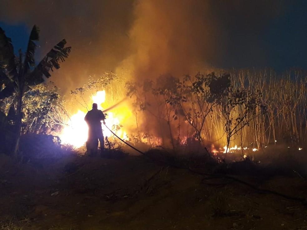 Sete militares trabalharam na operação e apagaram o incêndio em Sorriso (Foto: Corpo de Bombeiros de MT/Assessoria)