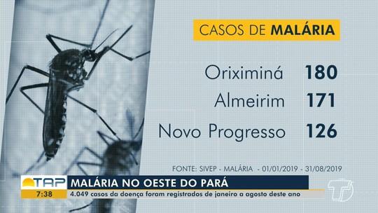 Mais de quatro mil casos de malária foram registrados no oeste do Pará em 2019