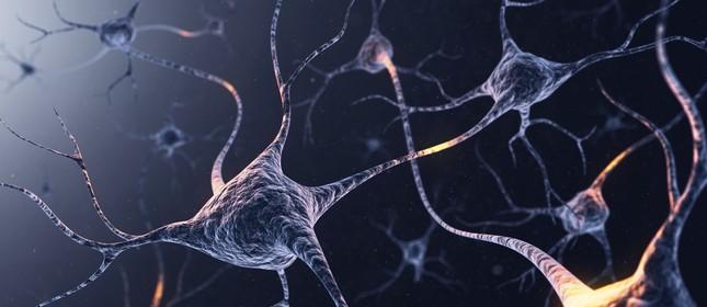 Representação de neurônios