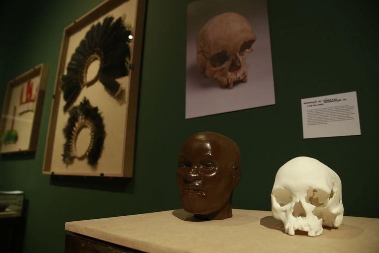 Réplicas do crânio de Luzia na exposição Museu Nacional Vive  (Foto: Fernando Frazão/Agência Brasil)