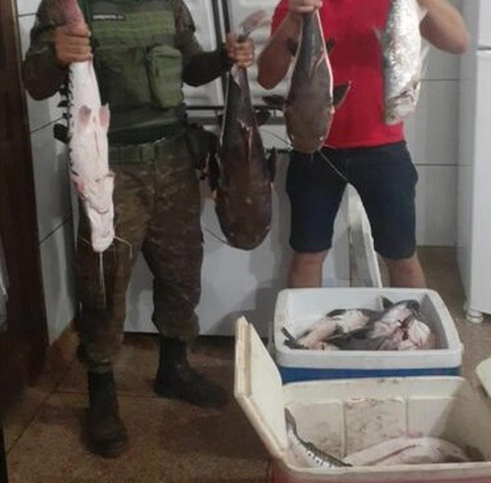 Operação Iara visa combater a pesca predatória em Rondônia  — Foto: Batalhão de Polícia Ambiental/Reprodução