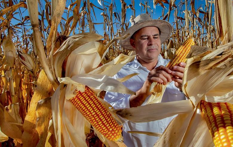Etanol valoriza o milho em MT - Emilio Cesar, da Ideal Agro (Foto: Rogerio Albuquerque)