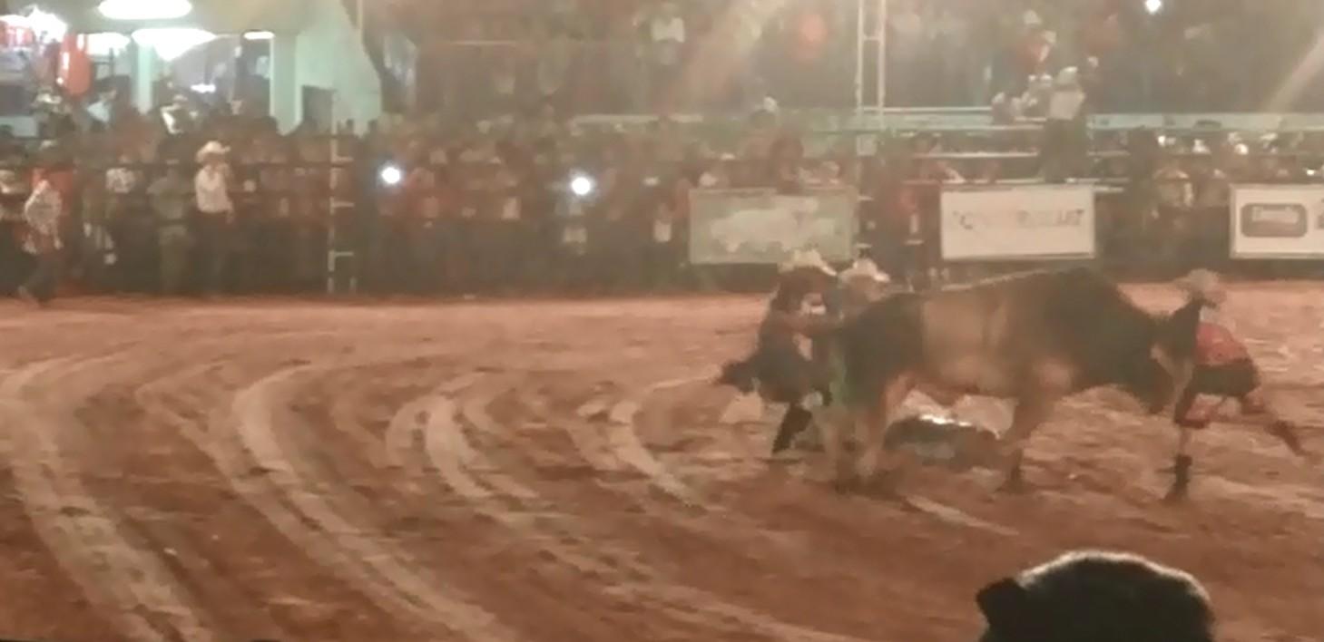 Peão do noroeste paulista morre pisoteado por touro em rodeio; vídeo