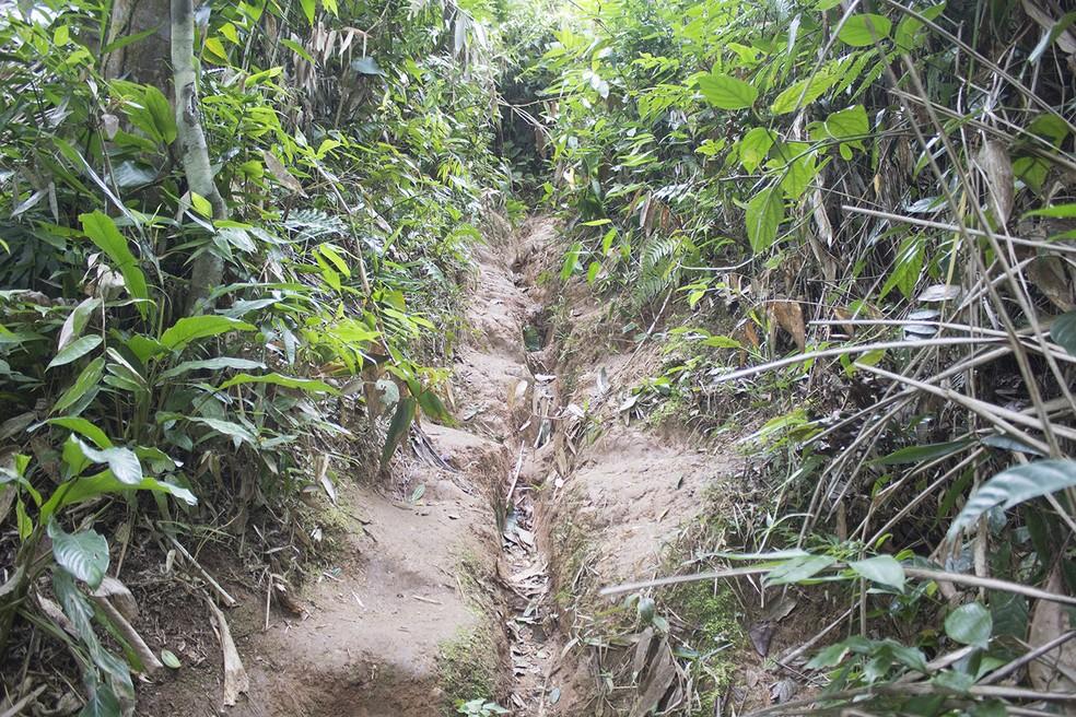 Dificuldade em uma das trilhas do Morro Escalvado  — Foto: Marcio Kubo