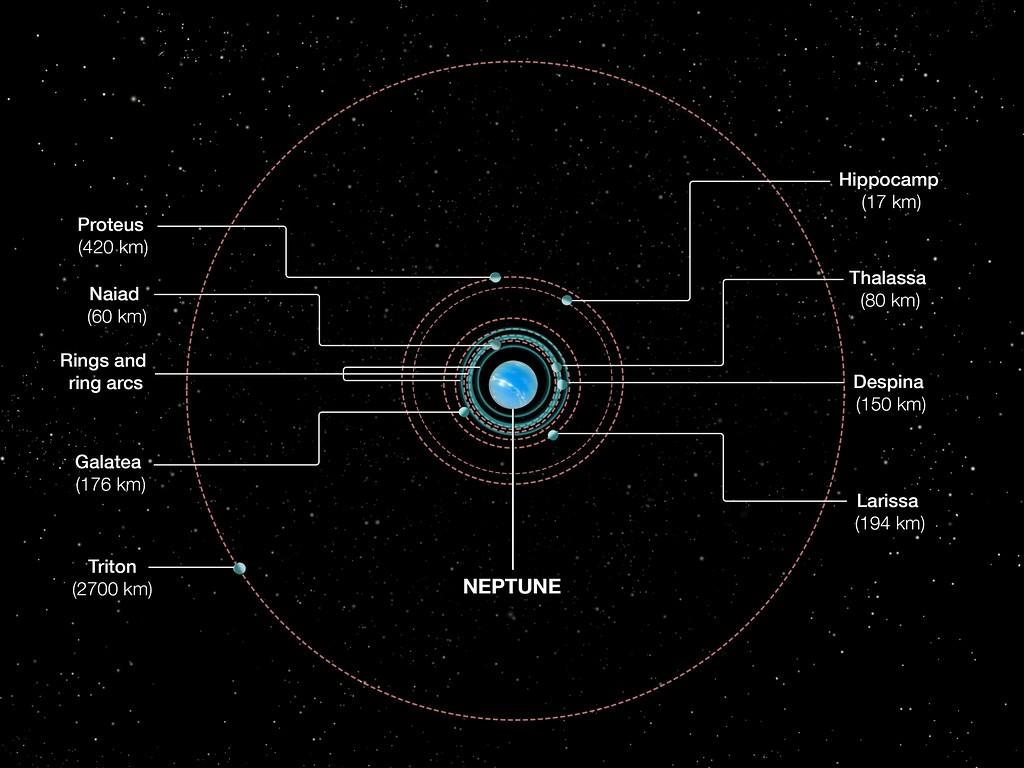 Diagrama mostra a órbita de Netuno (Foto: NASA, ESA, and A. Feild (STScI))