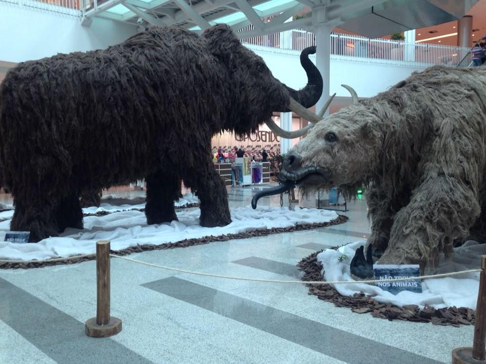 Exposição Gigantes da Era do Gelo — Foto: Shopping Parangaba/Divulgação