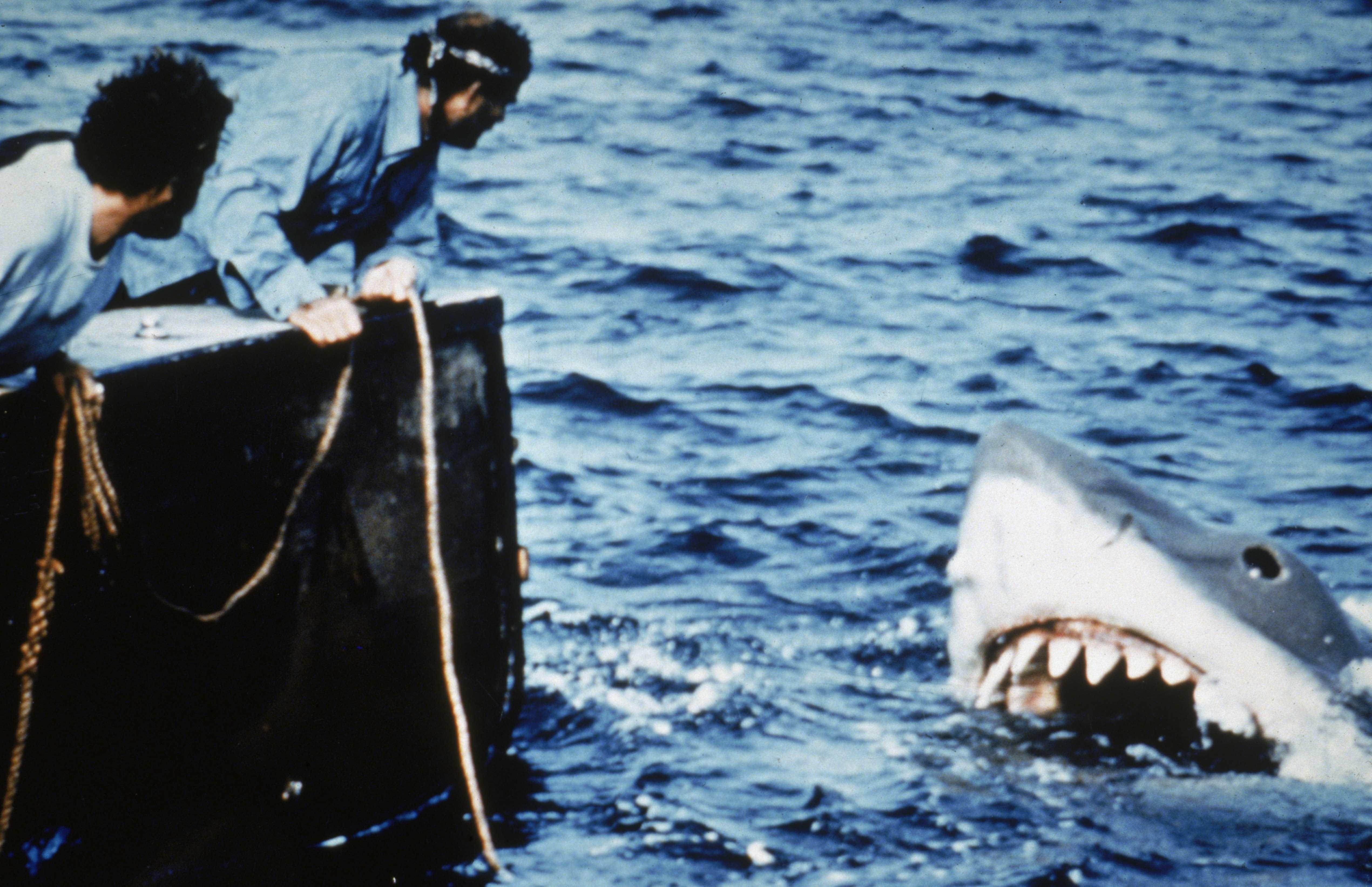 Tubarão original do filme é restaurado e será exibido em museu (Foto: Getty Images)