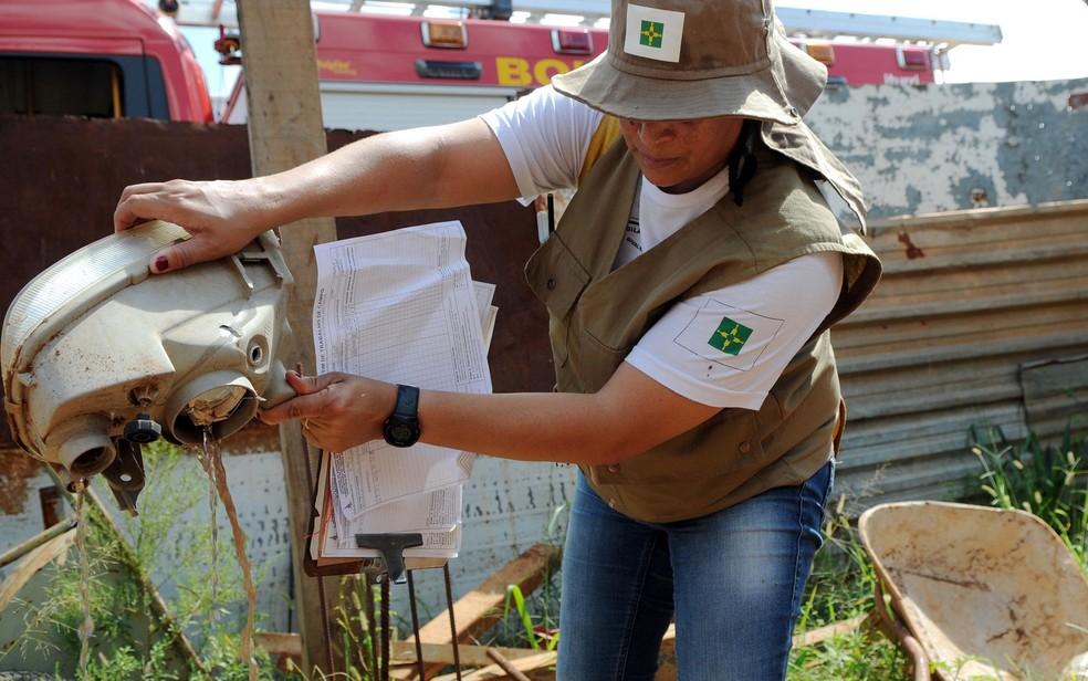 Servidor da Secretaria de Saúde do Distrito Federal durante ação de combate ao mosquito transmissor da dengue — Foto: Gabriel Jabur/Agência Brasília