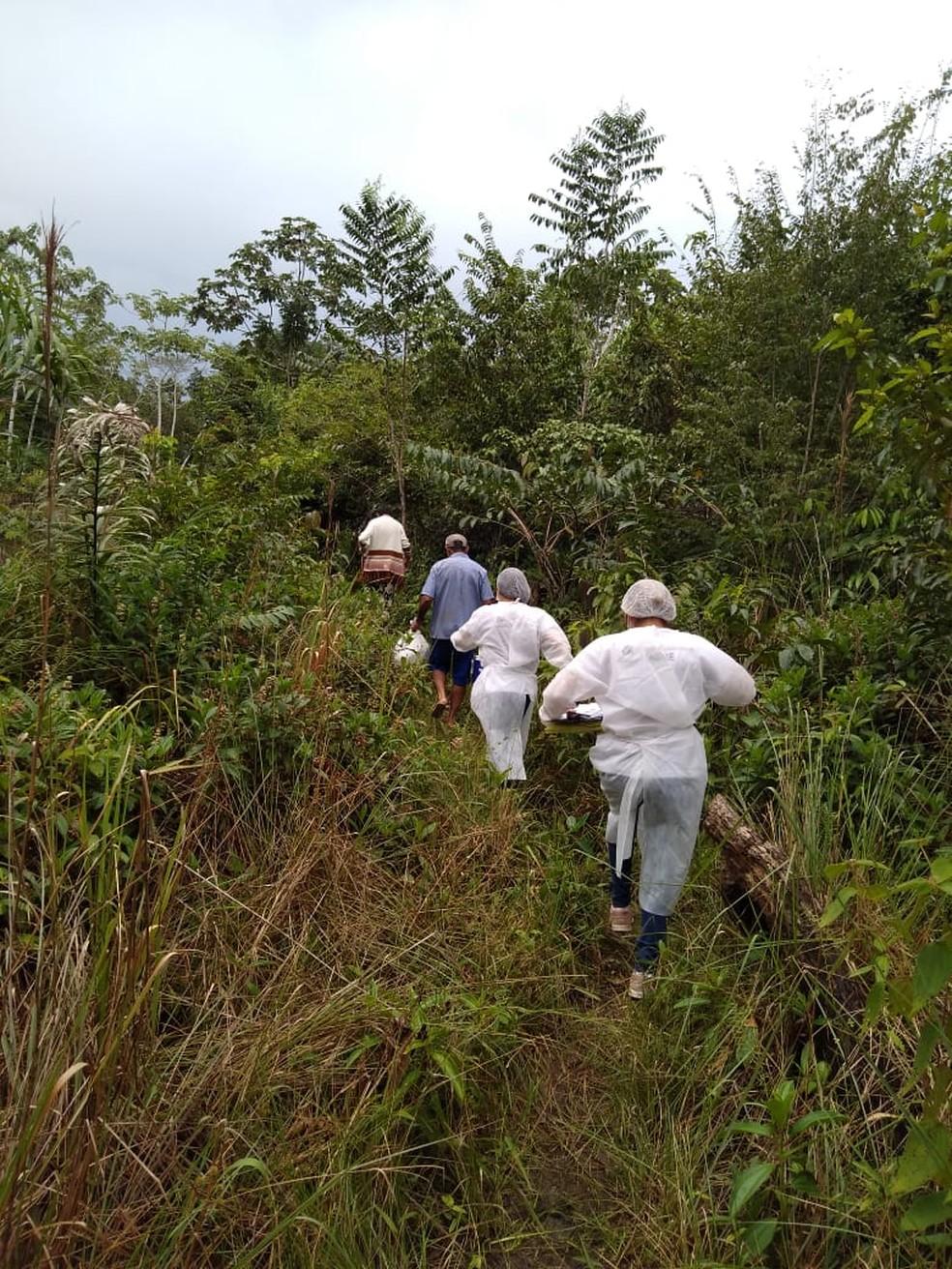 Equipe de profissionais da saúde do Amapá enfrentam mato alto para levar vacina contra a Covid-19 — Foto: Marquele Balieiro/Arquivo Pessoal
