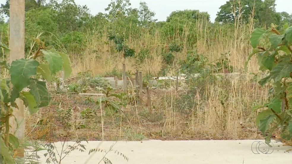 Mato toma conta de terreno onde deveria ser construído maior complexo prisional do Tocantins (Foto: Reprodução/TV Anhanguera)