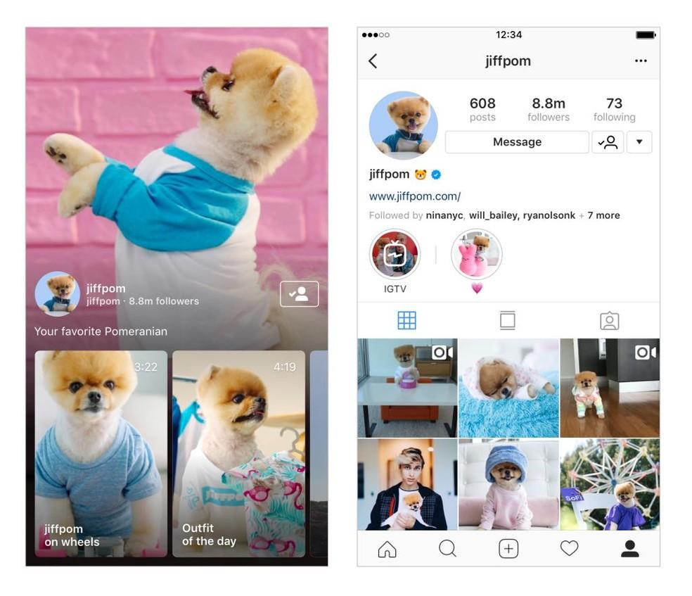 IGTV, do Instagram, deve concorrer com o YouTube (Foto: Divulgação)