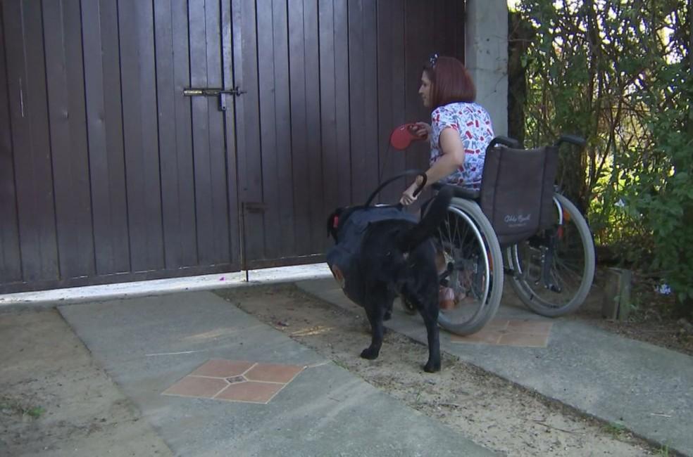Juliana adestrou Luara para ajudá-la depois que virou cadeirante — Foto: Mike Adas/TV TEM