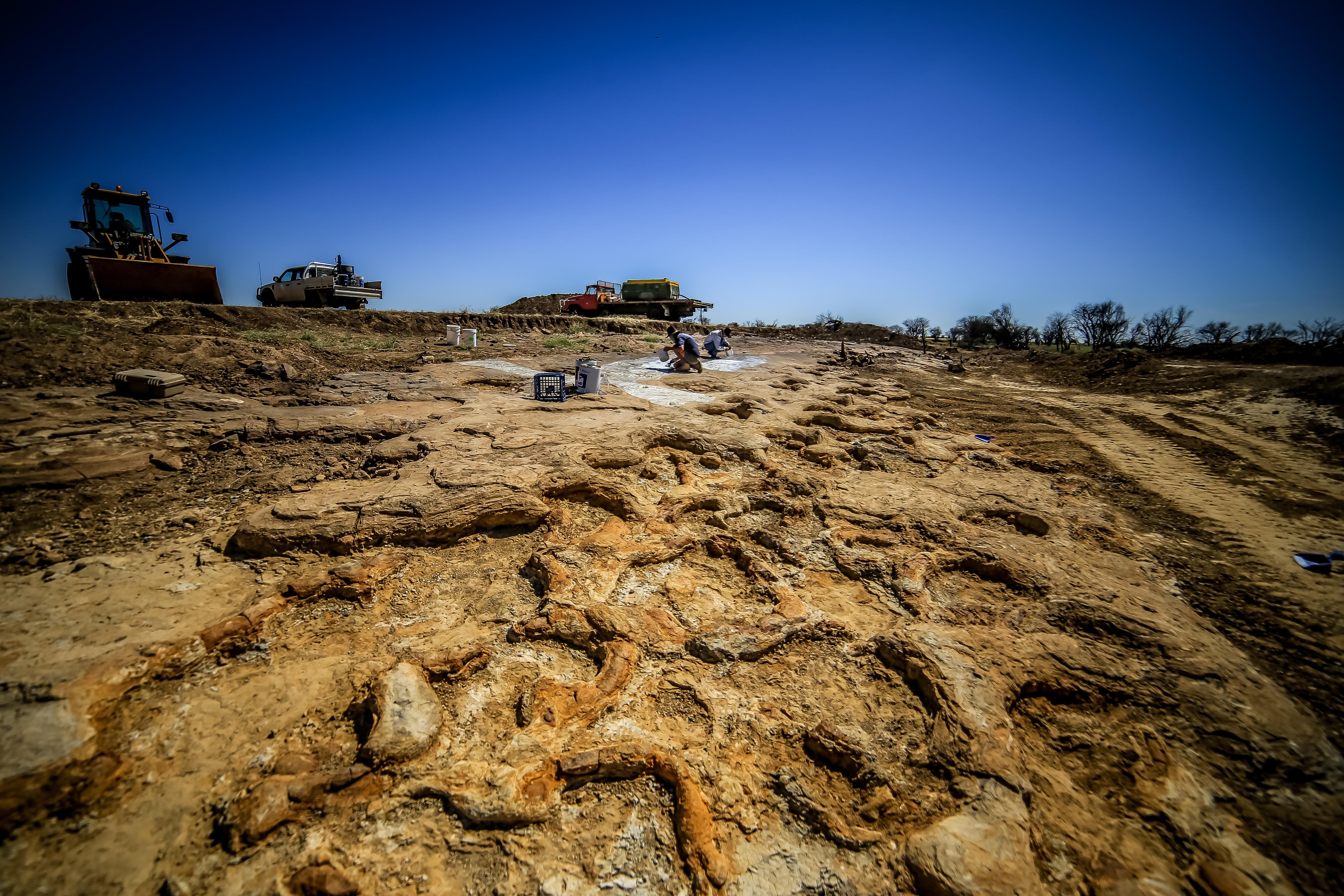 Pegadas de saurópodes (Foto: Governo de Queensland / Divulgação)