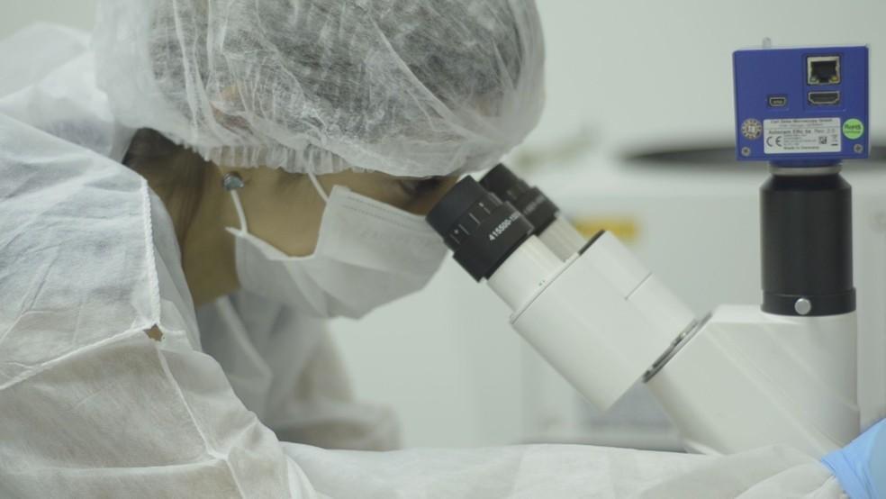 Pesquisadora em laboratório de startup de Ribeirão Preto que desenvolveu biocurativo com células-tronco — Foto: Leonardo Vilela/EPTV