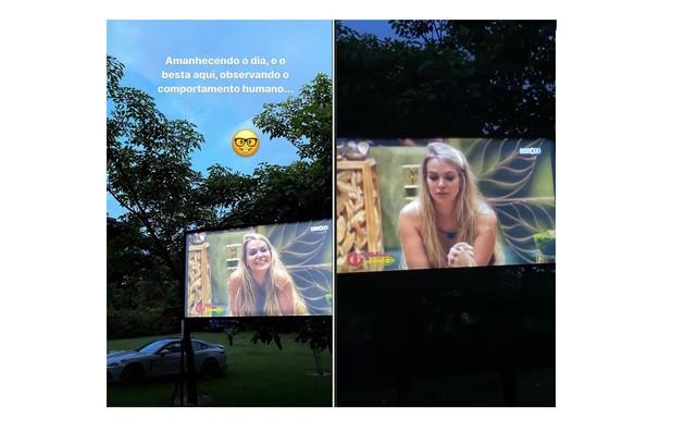O cantor sertanejo Rodolffo Matthaus, ex-marido de Rafa Kalimann, instalou um telão no gramado de seu quintal e costuma seguir até de manhã acompanhando o pay per view do 'BBB' (Foto: Reprodução/Instagram)