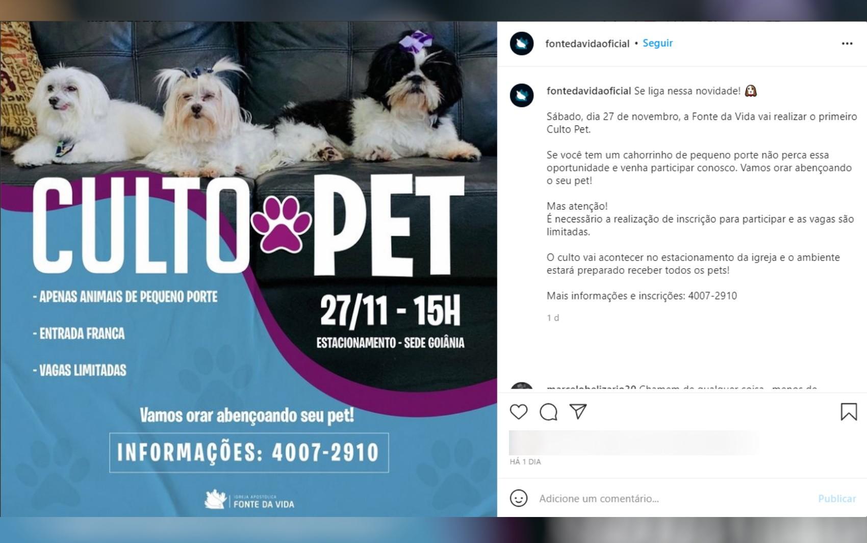 Igreja goiana viraliza na web ao anunciar culto para pets: 'Música vai ser late coração'
