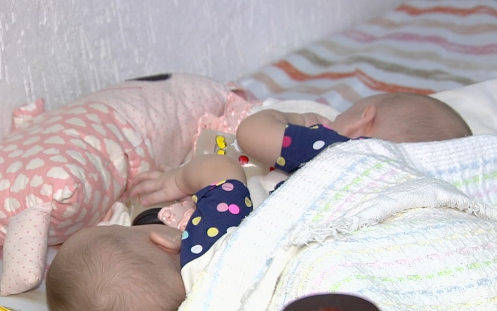 Mãe traz gêmeas siamesas a Goiânia para consulta de cirurgia de separação: 'Vamos vencer'