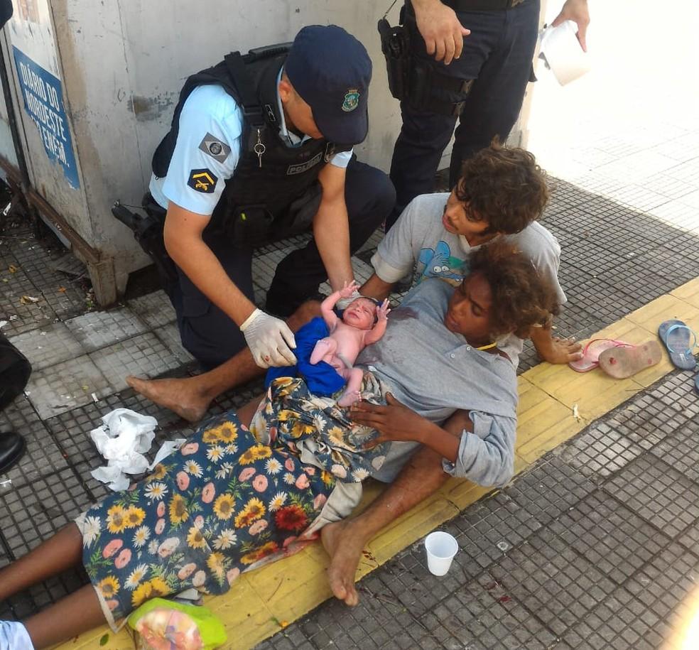O parto ocorreu sem complicações na manhã desta quarta-feira (11). (Foto: PM/Divulgação)