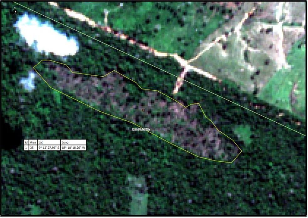Imagem de satélite captada pelo Batalhão de Policiamento Ambiental mostra um novo desmate em área de 35 hectares  — Foto: Reprodução