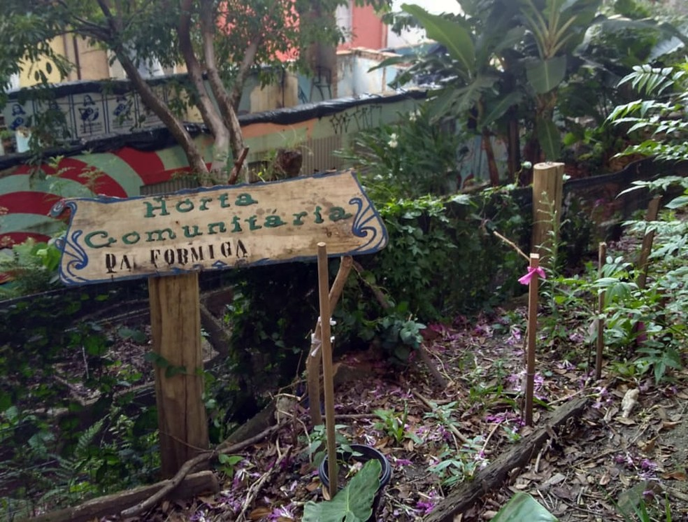 Horta comunitária funciona em terreno de Porto Alegre — Foto: Rose Rolim/arquivo pessoal