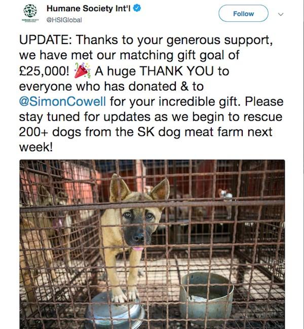 A mensagem de agradecimento da ONG que recebeu a doação feita por Simon Cowell (Foto: Twitter)