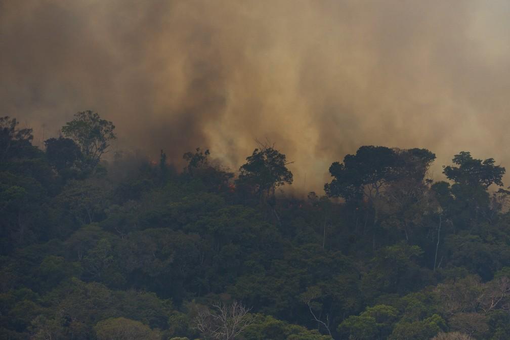 Fogo consome vegetação perto de Porto Velho na tarde de 23 de agosto de 2019 — Foto: AP Foto / Victor R. Caivano