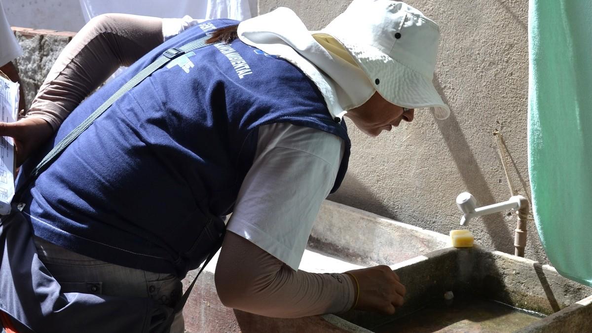 Nove bairros de João Pessoa têm médio risco de infestação do Aedes aegypti